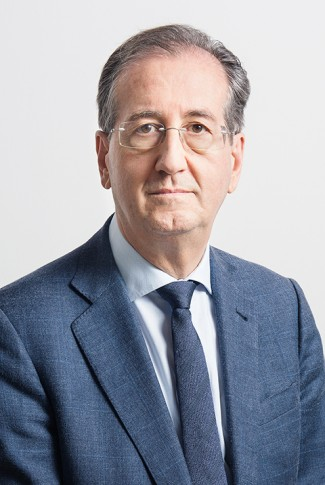 Jose Miguel Embid Irujo